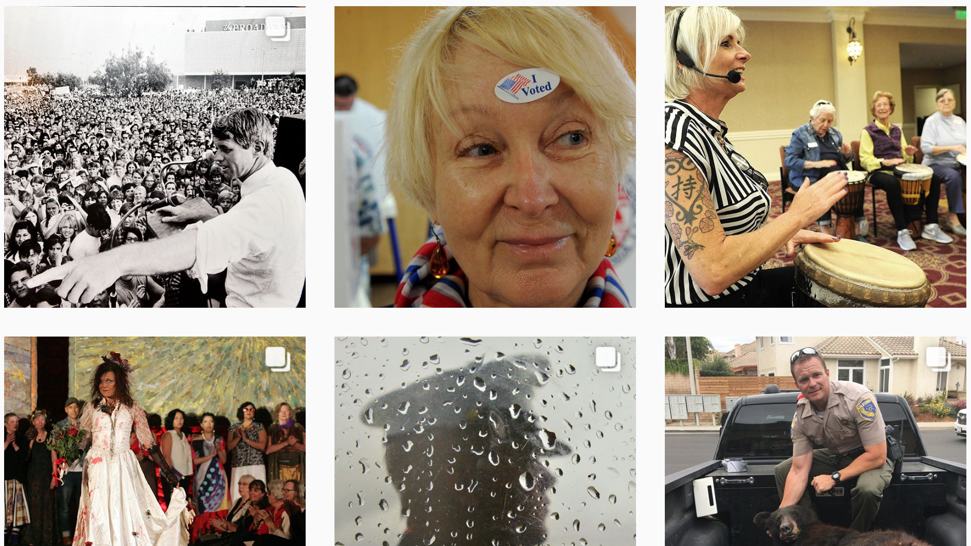 A selection of our recent Instagram posts and the stories behind the photos