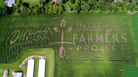 "The corn maze is part of the Culvers ""Thank you Farmers""  project this year."