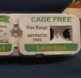 Eggs from Alabama farm recalled following salmonella outbreak