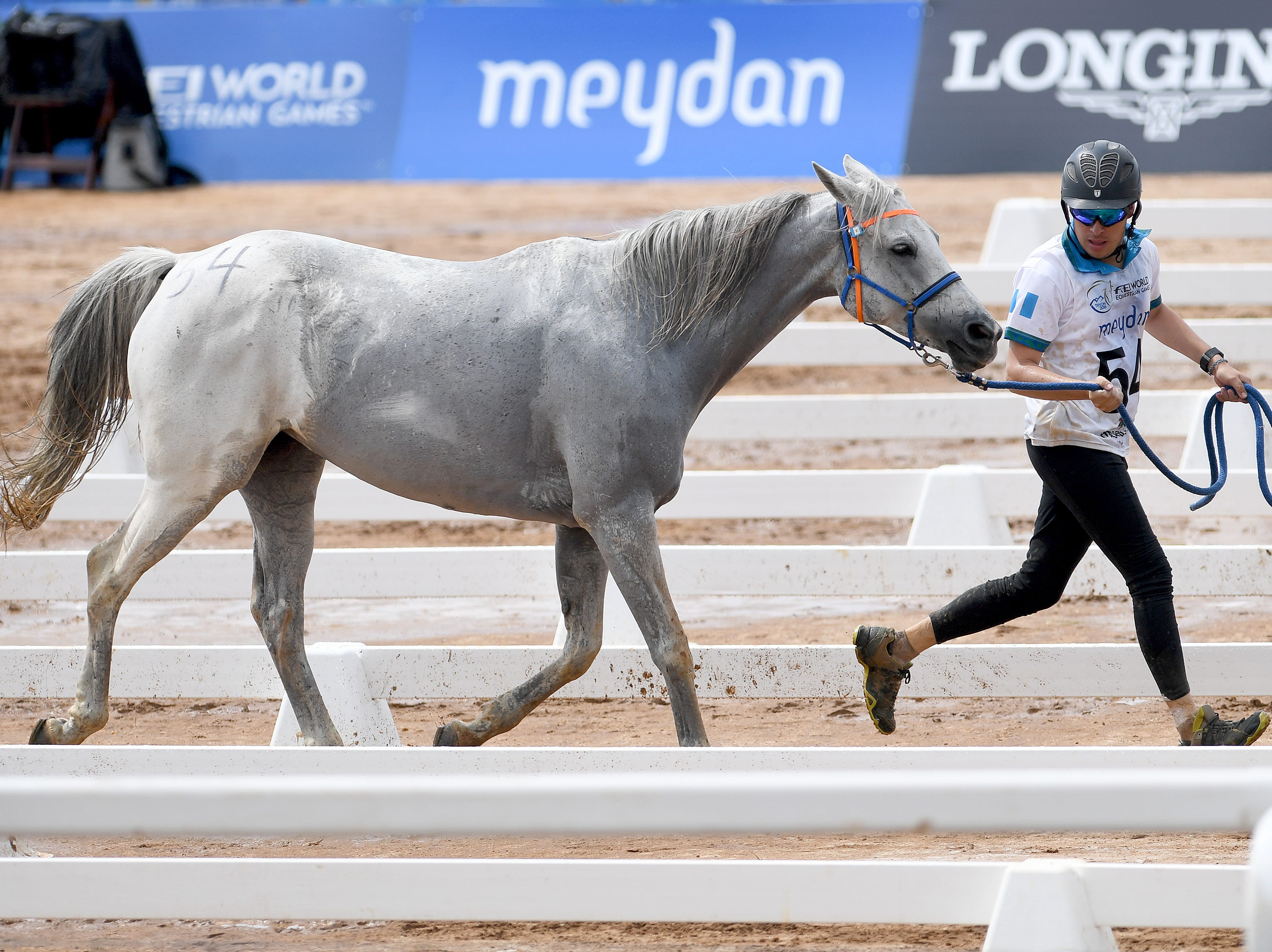 Guatemalan rider Maurico Evans, and his horse, Zara Me, go through their veterinarian checks before heading out for another lap of the Endurance race during the FEI World Equestrian Games at the Tryon International Equestrian Center on Sept. 12, 2018.