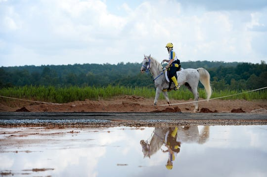 Swedish rider Yvonne Ekelund sets out on her horse, Hedonizt, for a lap of the endurance race Wednesday.