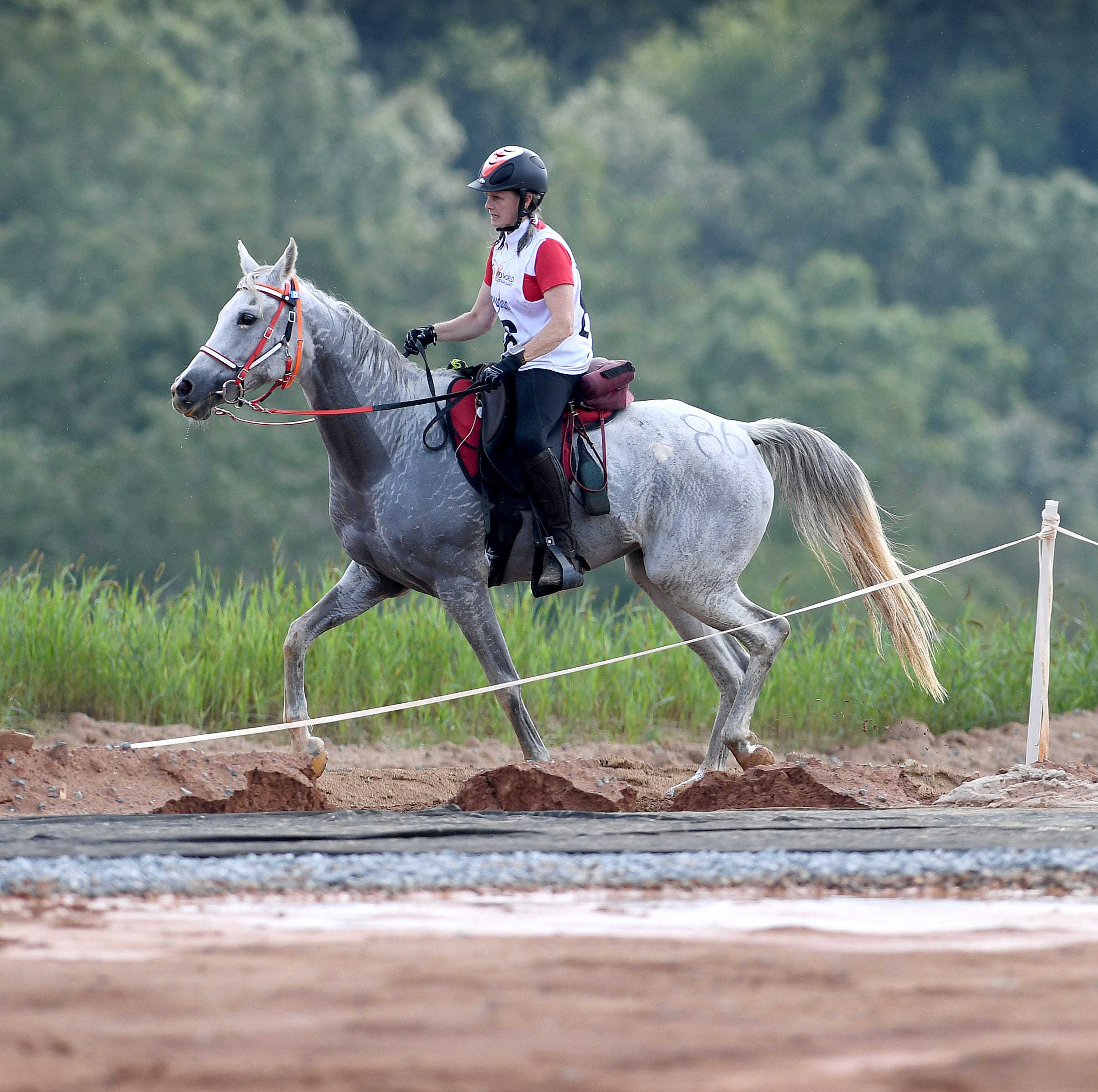 Tryon International Equestrian Center violates animal waste disposal regulations