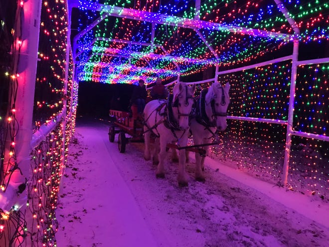 The Trail of Lights in Davison Township, Mich., is so popular that it sells out in a single day.
