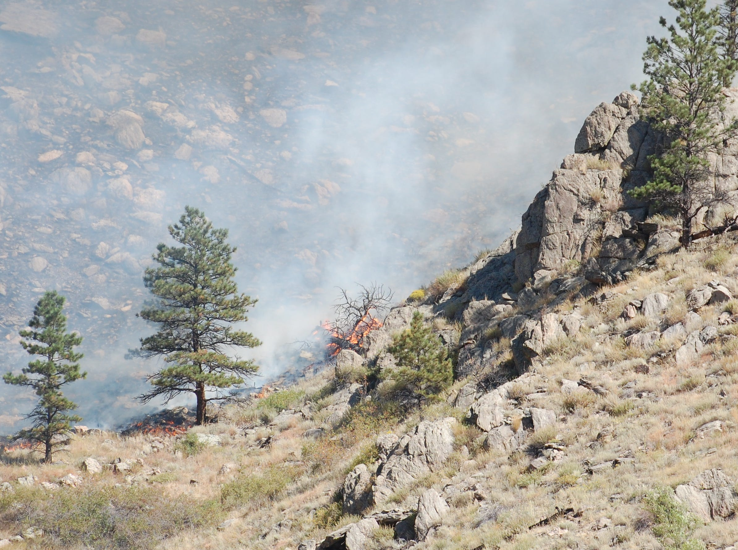 A shrub bursts into flames just west of Gateway Park and north of Colorado Highway 14 as the Seaman Fire burned towards the road on Wednesday.