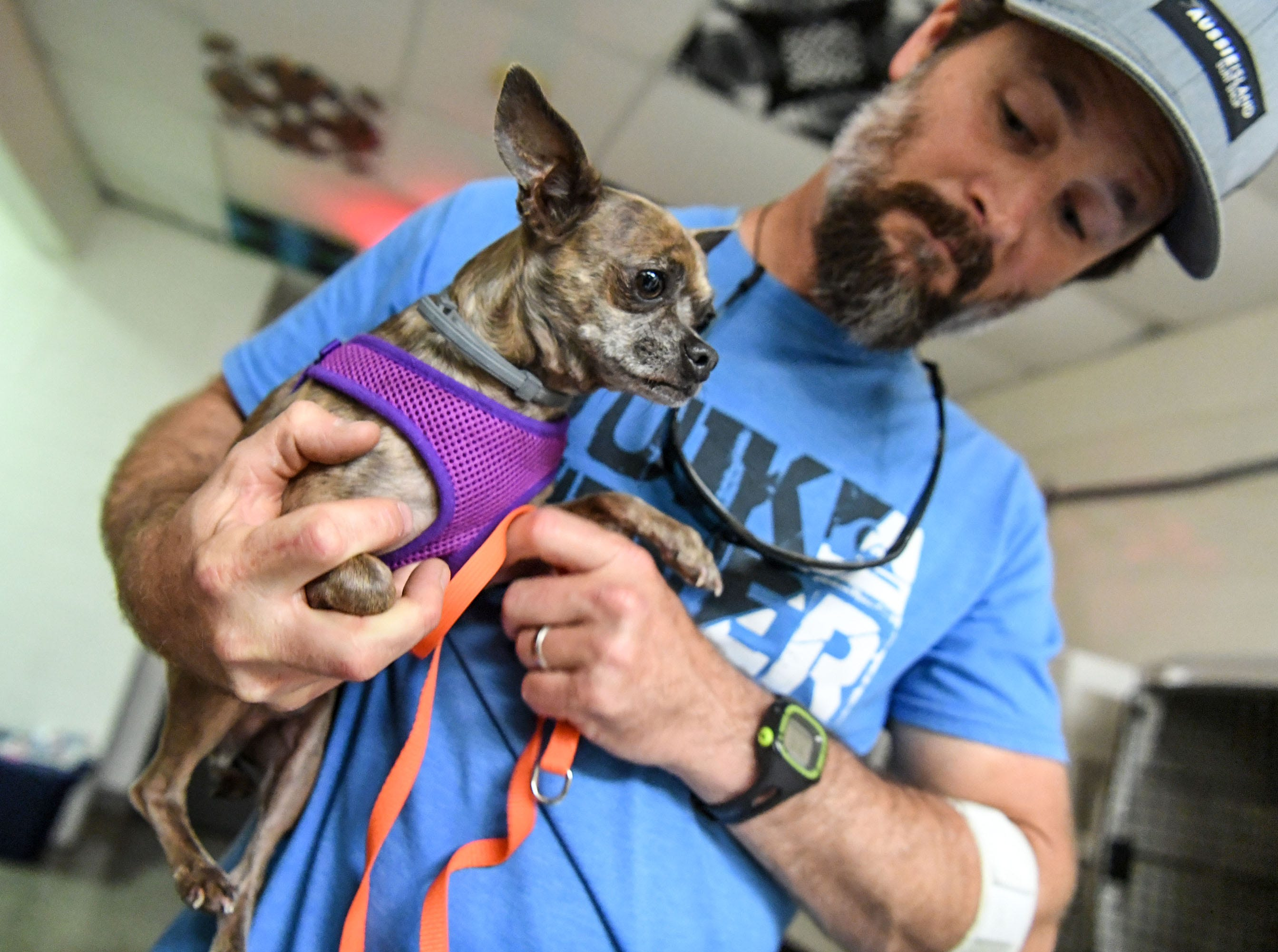 Jameson McDermott, an employee with New Hanover County, holds a dog at the county emergency shelter held at Trask Middle School in Wilmington, North Carolina on Tuesday, September 11, 2018. Hurricane Florence is expected to make landfall in Wilmington Thursday night. (Ken Ruinard / Greenville News / Gannett USA Today Network / 2018 )