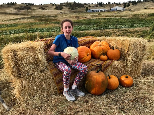 Cadence Kallenberger holds a pumpkin she grew at her pumpkin patch south of Havre on Bullhook Road. The 4-Her has sold pumpkins to the local brewery and is holding a pick-your-own pumpkin event.