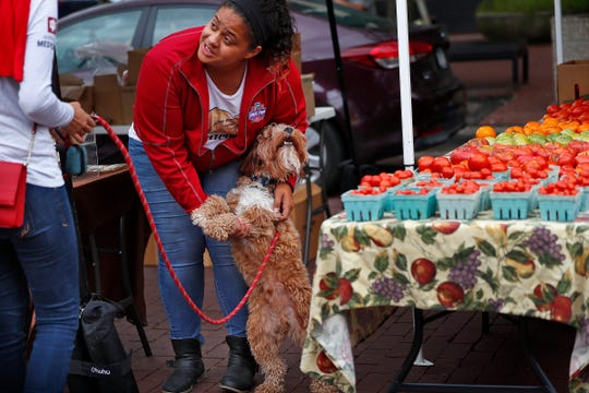 Dajanee Johnson, with Dragonwood Honey and Maple, from Kempton, IN, pets customer Deena Elsahy's dog, Harry, at the Original Farmers' Market by City Market, Wednesday, Sept. 12, 2018.  The market runs every Wednesday through October.
