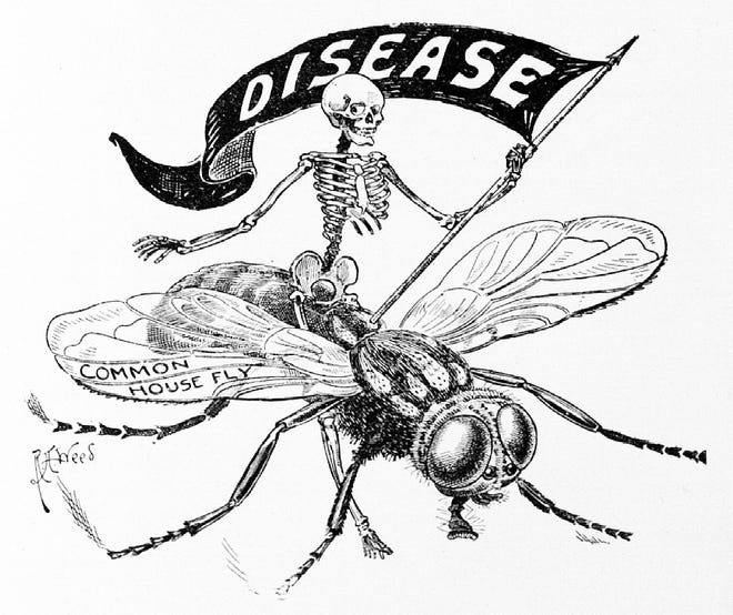 Public health poster warning Hoosiers of the dangers of house flies and disease.