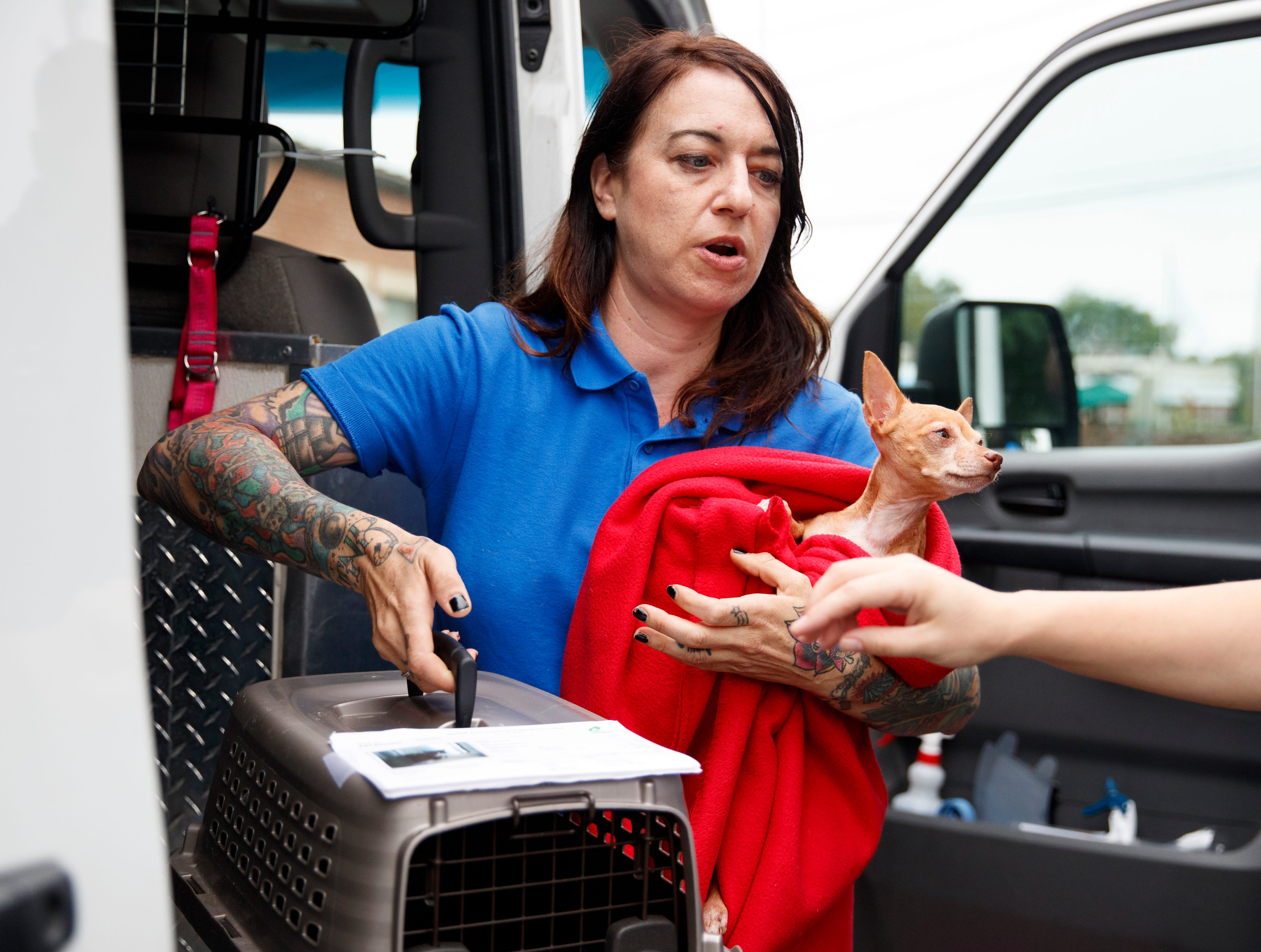Laura Gretch, Humane Rescue Alliance transport manager, holds Frances, an 8 year-old Chihuahua mix as she help unload 26 cats and dogs arriving at Humane Rescue Alliance in Washington, Tuesday, Sept. 11, 2018, from Norfolk Animal Care and Control of Norfolk, Va., in advance of Hurricane Florence. People aren't the only ones evacuating to get out of the path of Hurricane Florence. The dogs and cats will all be available for adoption.