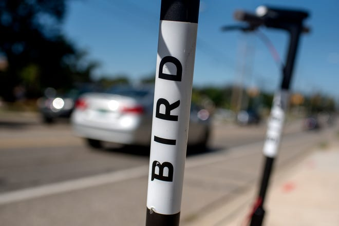A detail look of the Bird scooter photographed on Wednesday, Sept. 12, 2018, in East Lansing. Bird Rides Inc., an electric-scooter sharing service, is now available in East Lansing. MSU officials said Oct. 2 they have impounded more than 100 of the scooters.