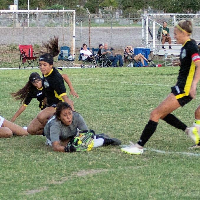 Alamogordo Lady Tigers lose 1-4 in home opener