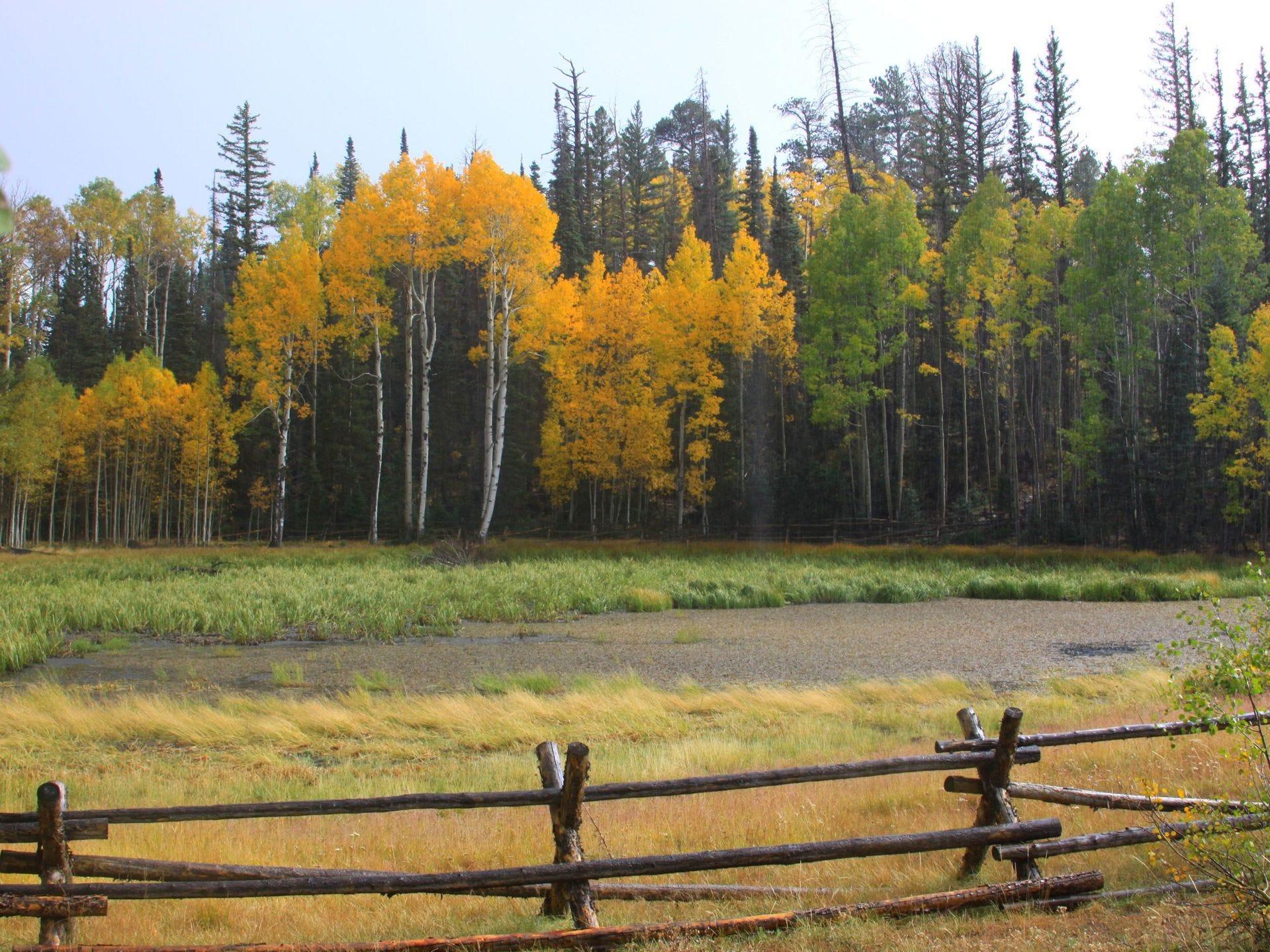 Distrito Norte Ranger Kaibab, Pleasant Valley, en el Bosque Nacional Kaibab.