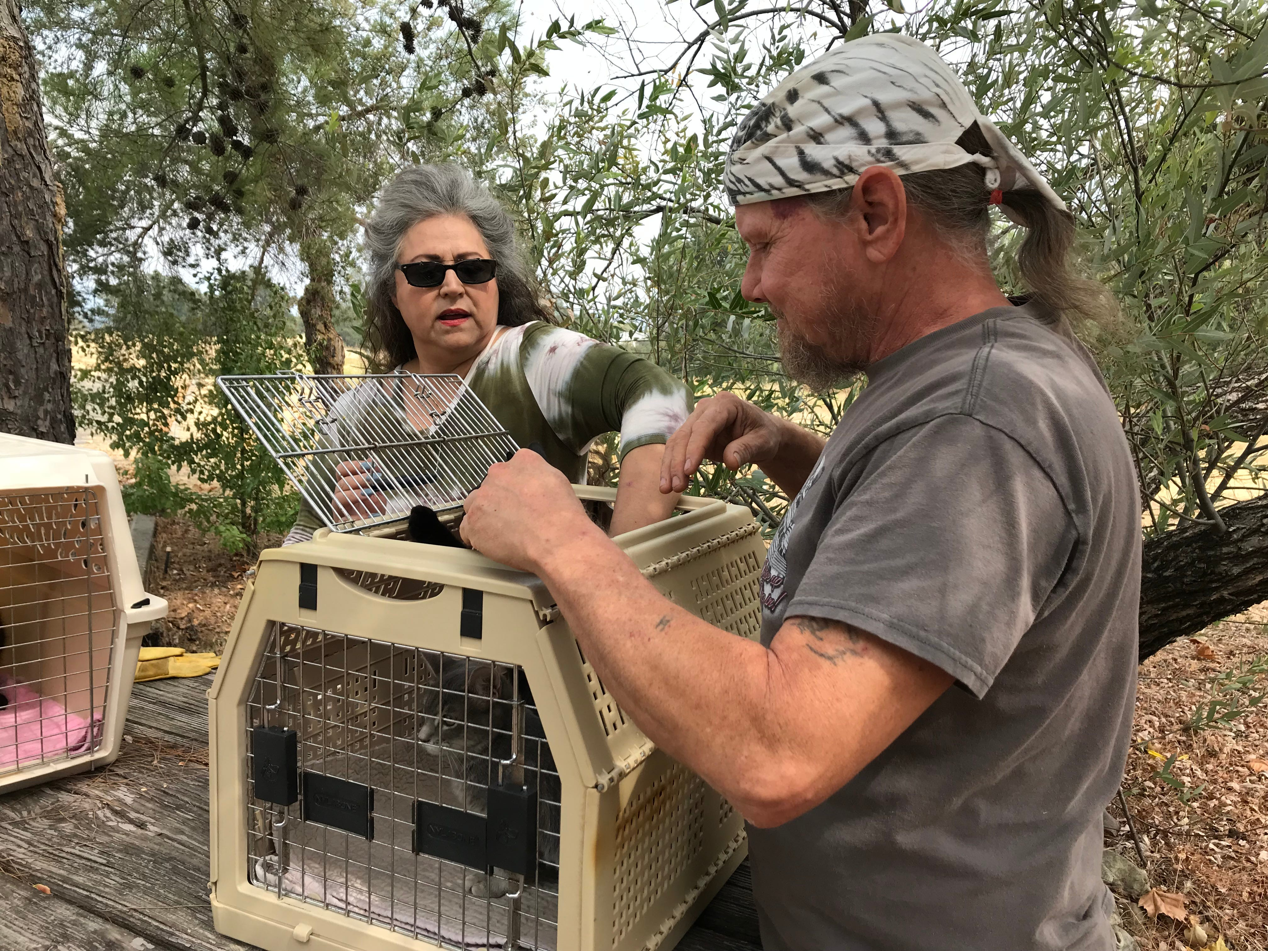 Blanca Jeffers and Rod Durler stop for a break and to give cuddles to two kitten captives. They trap displaced cats in Carr Fire-burned areas for medical care and adoption.