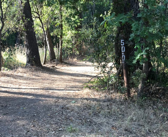 A man and woman living in a homeless camp at 500 Black Canyon Road were found dead by Shasta County Sheriff's deputies just after noon on Friday, Sept. 7, 2018.