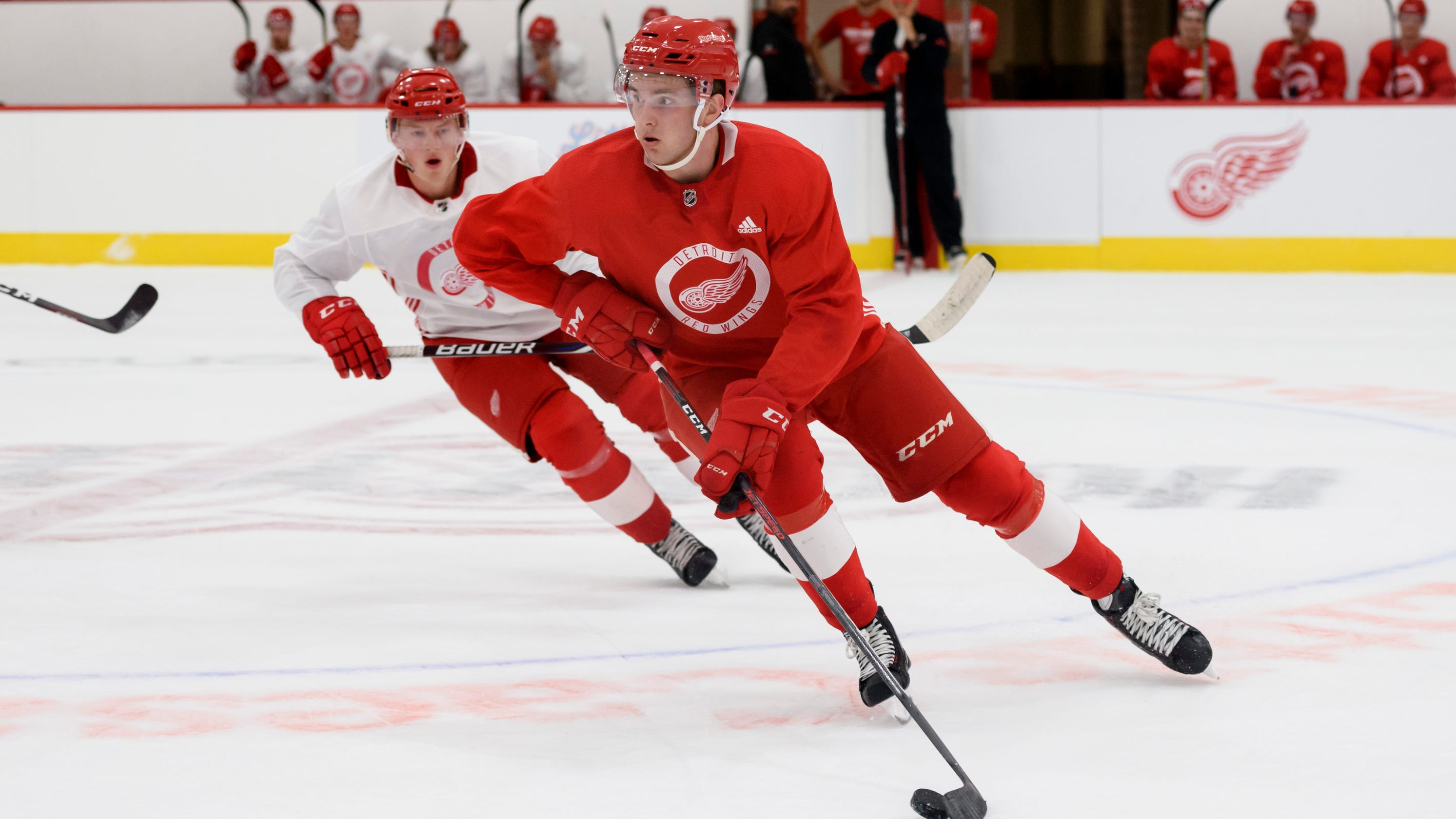 Red Wings will showcase kid line of Michael Rasmussen 2dec1d08f