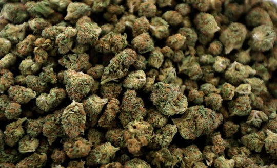 In this April 12, 2018, photo, nugs of marijuana await packaging at the Hollingsworth Cannabis Company near Shelton, Wash. America's marijuana supporters have a lot to celebrate on this 420 holiday: Thirty states have legalized some form of medical marijuana, according to a national advocacy group. Nine of those states and Washington, D.C., also have broad legalization where adults 21 and older can use pot for any reason. Michigan could become the 10th state with its ballot initiative this year. Yet cannabis remains illegal under federal law, and it still has many opponents.