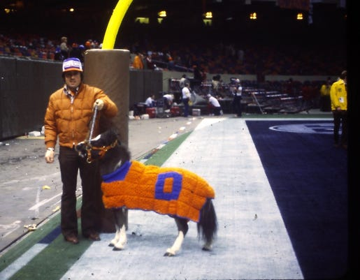 NFL Denver Broncos first mascot