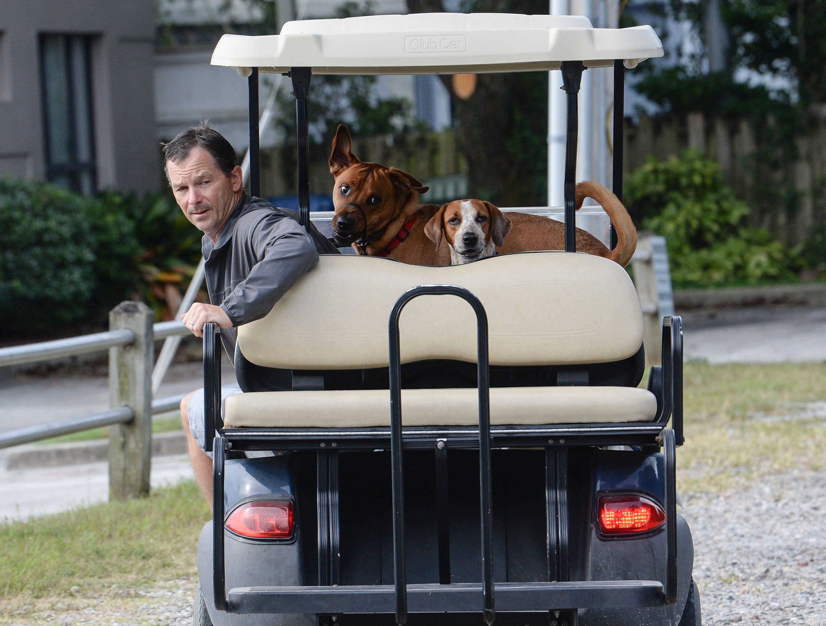 Mark Johnson of Wilmington drives his three dogs by the Crocker's Landing harbor in Wilmington, before Hurricane Florence arrives on Thursday, September 13, 2018. (Ken Ruinard / Greenville News / Gannett USA Today Network / 2018 )