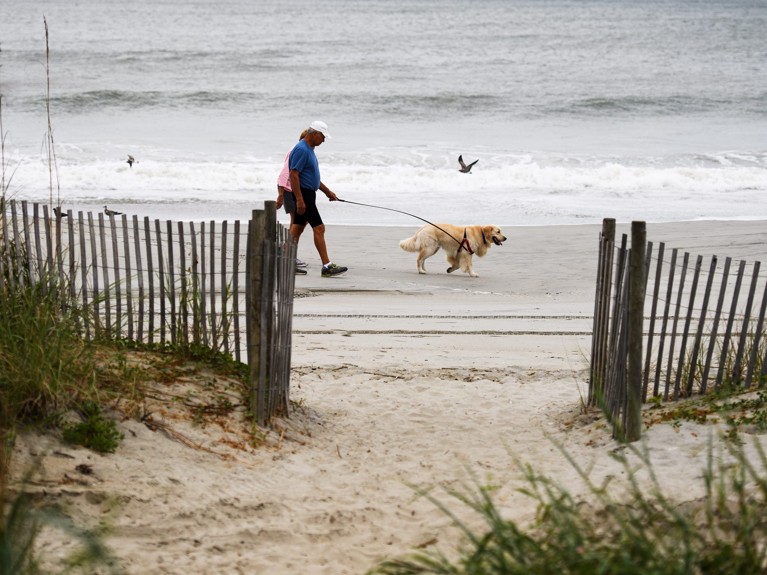 Pete and Pat LaPlca walk their dog Clipper along the beach near the Myrtle Beach Boardwalk and Promenade on Thursday, Sept. 13, 2018.