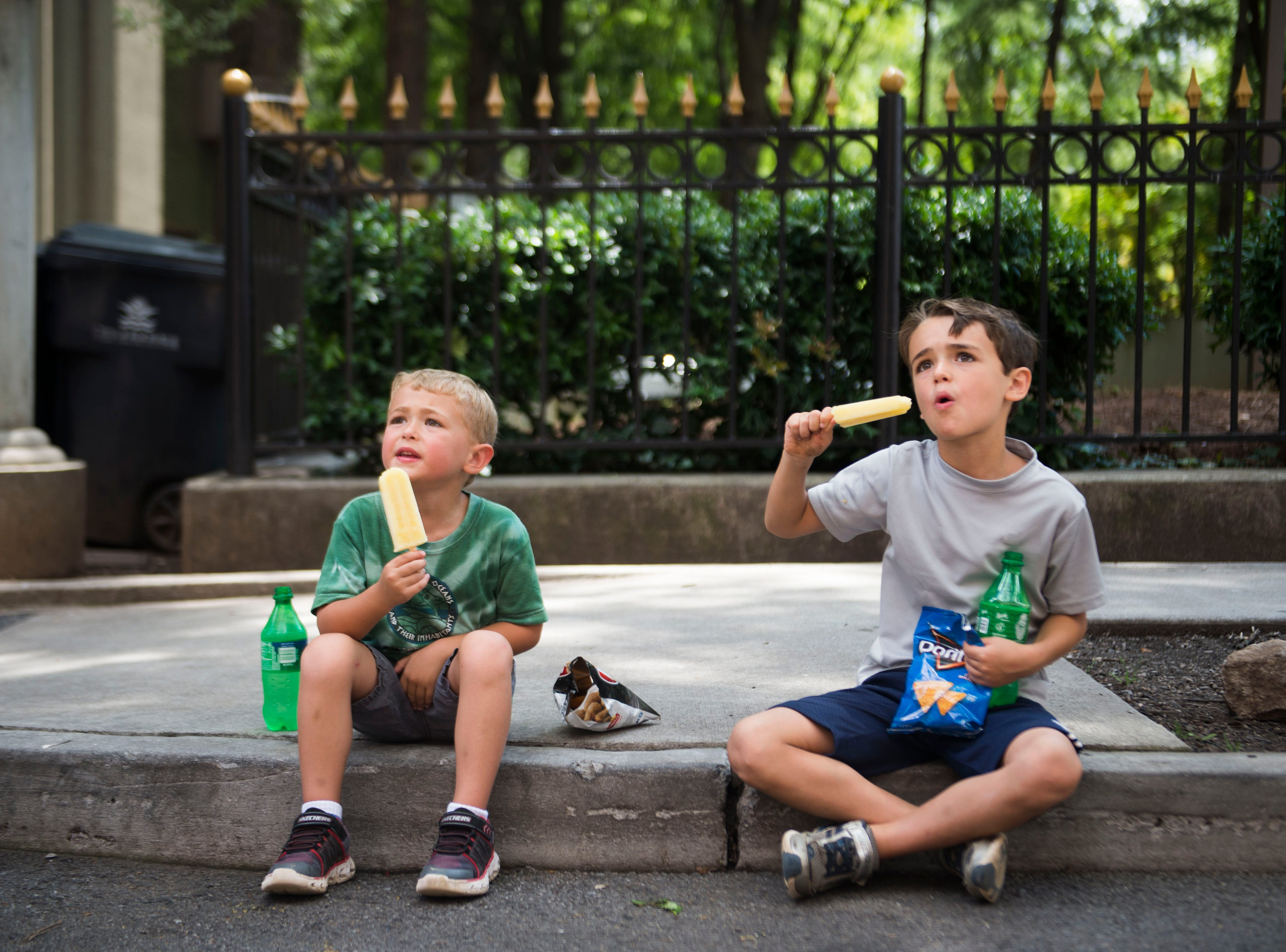From left brothers Chase Stryk, 5, and Eli 8 eat their Artistic Pops at the farmers market in downtown Knoxville Saturday, Aug. 4, 2018. Artistic Pops are gluten free, nut free, and dairy free popsicles.
