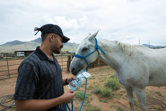 Kwamé Ponschock said he adds crushed CBD-based edibles into his horse feed, along with some grain and alfalfa.