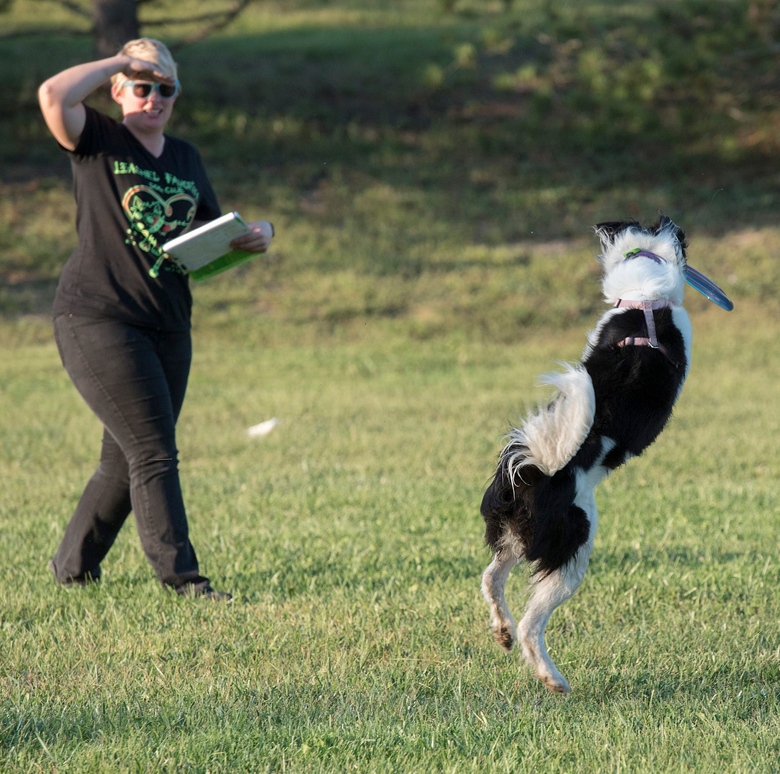 Toss & Fetch League is dog-gone good show for participants
