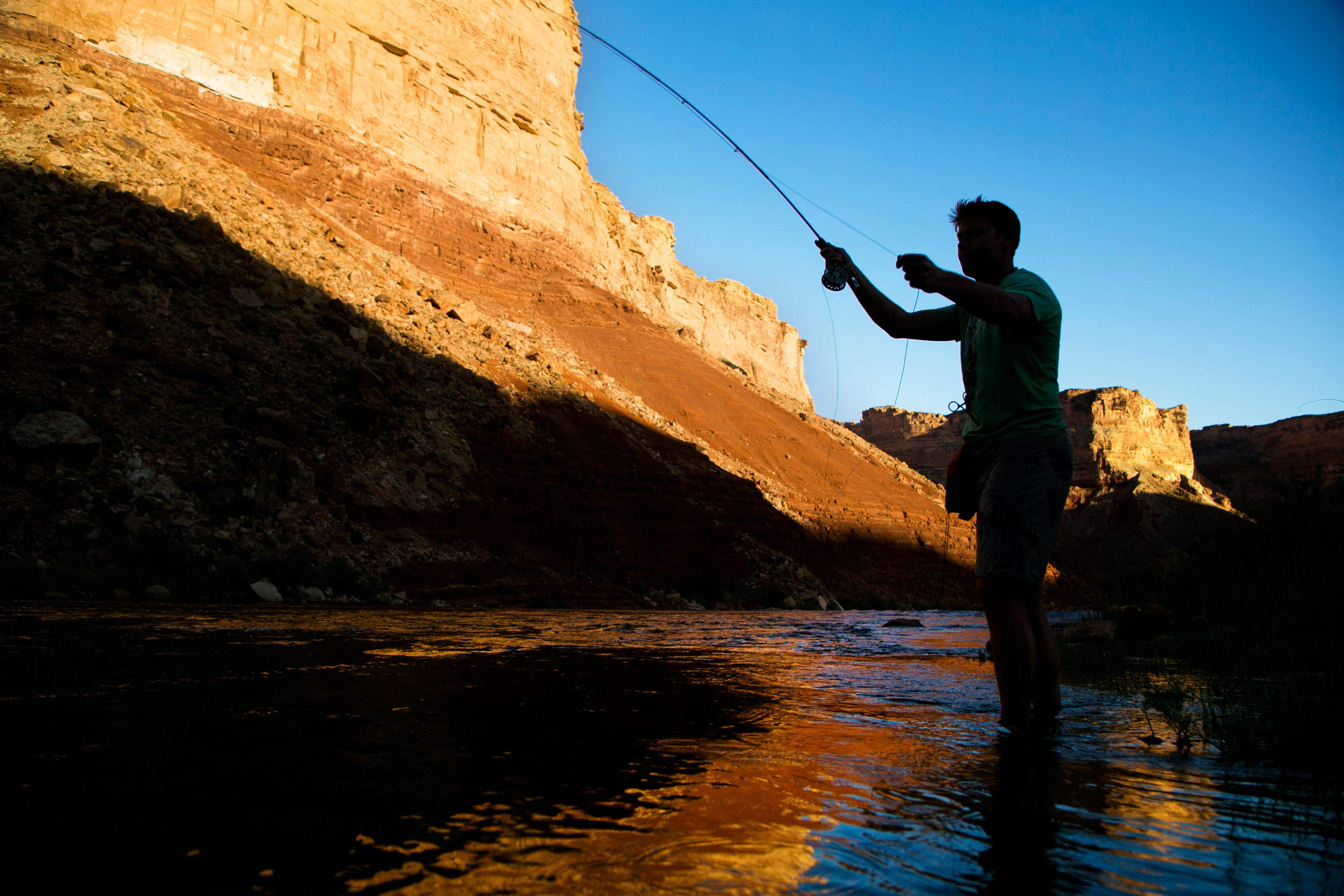 Stephen Sanborn fly fishes above Soap Creek Rapid in Grand Canyon National Park. Unlike the Colorado River's native humpback chubs, the popular rainbow trout drive jobs for fly-fishing guides and innkeepers in the area.