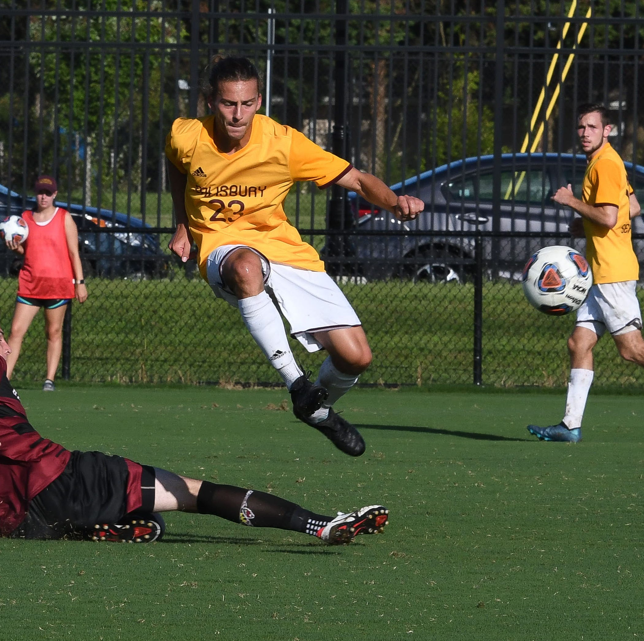 Salisbury University soccer features several local faces