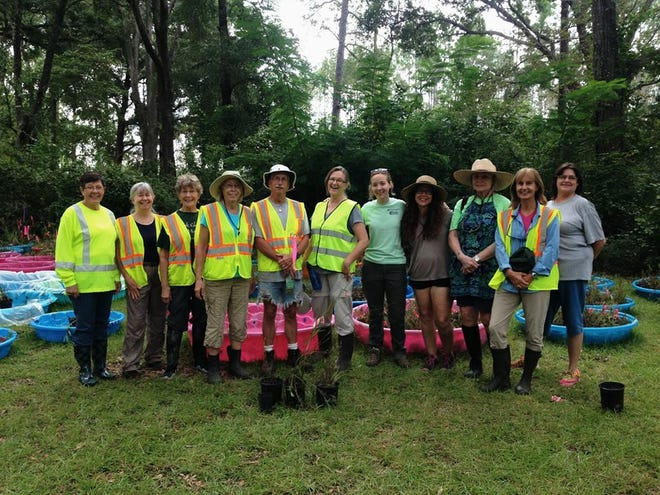 UF/IFAS Leon County Master Gardeners and other volunteers with some of the rescued plants.