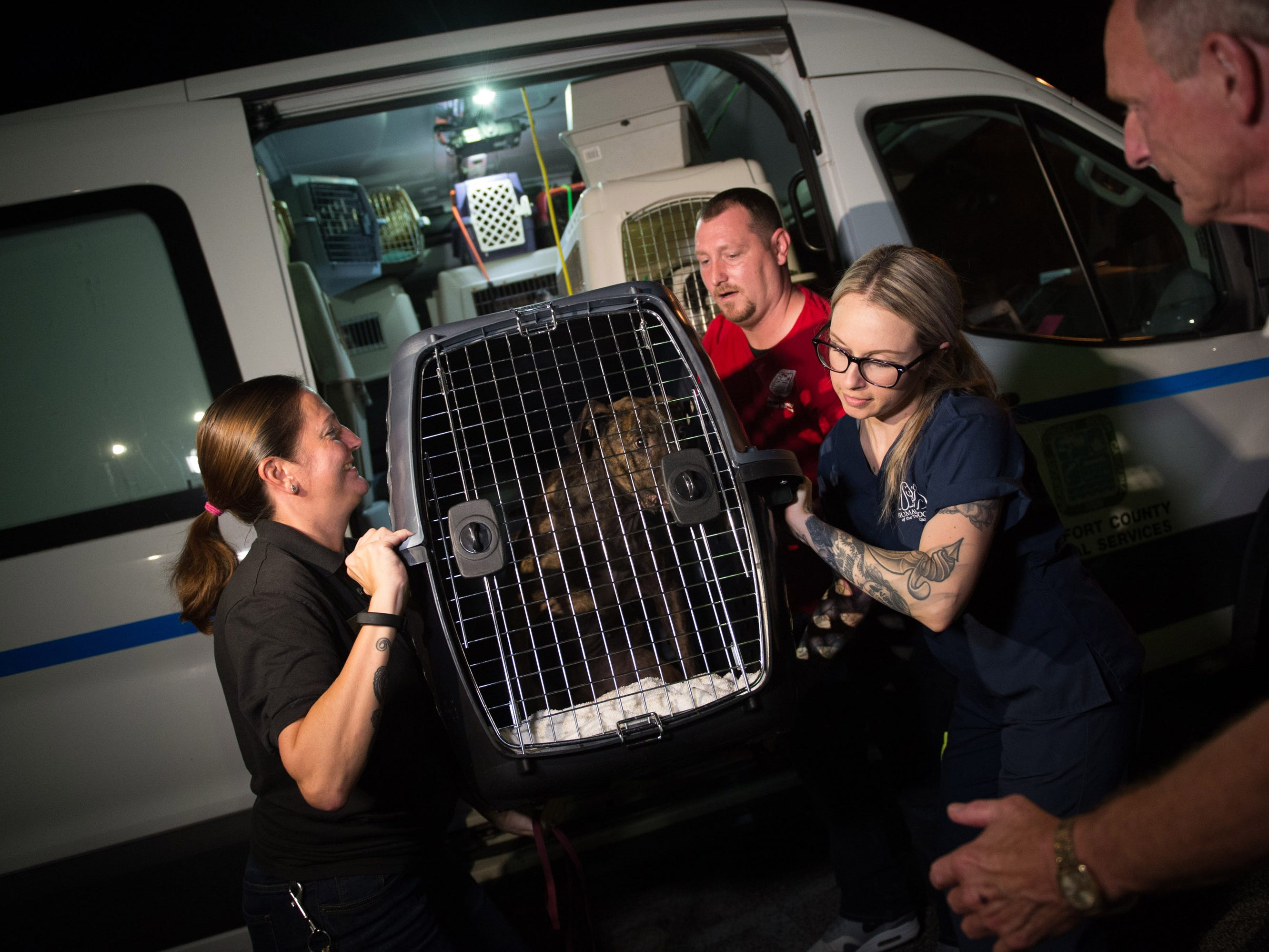 The Humane Society of the Treasure Coast in Palm City took in 48 animals (17 dogs and 31 cats) that the Beaufort County Animal Shelter & Control in South Carolina was forced to evacuate Wednesday, Sept. 12, 2018, from their facility because of the threat of catastrophic flooding from Hurricane Florence. The humane society is offering a special on adoptions to help place these animals by waiving all adoption fees through Sunday.