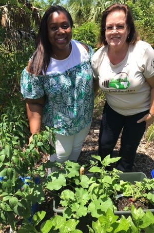 Nichole Beckford-Henry, Hibiscus Educational Services Coordinator, and Volunteer Jacquie Robertson showing off the bell pepper, radishes, and spinach that the children have worked very hard to grow!