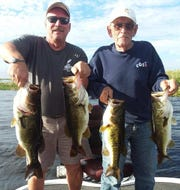 Ted Gibbs and his 88-year-old father from Brooklyn, Mich. caught these four largemouth bass and 33 more while fishing with wild shiners aboard Capt. Nate Shellen's boat, with Okeechobeebassfishing.com.