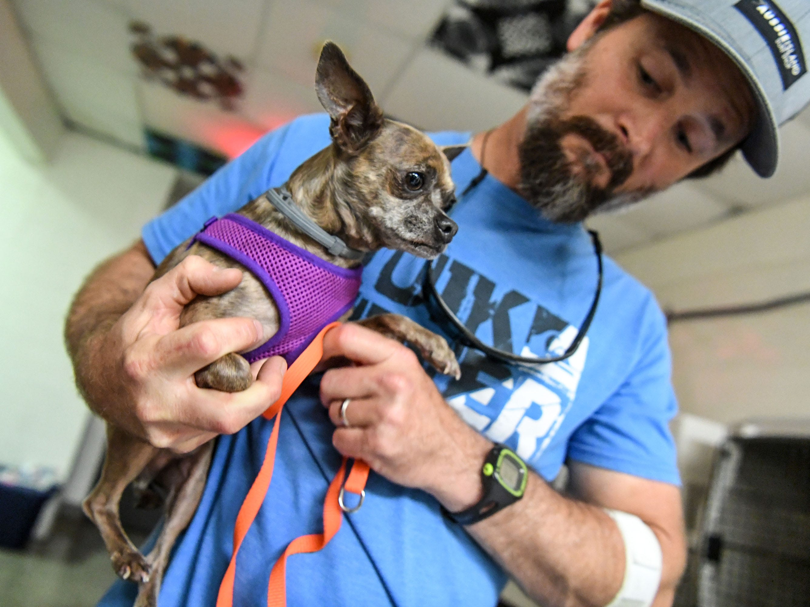 Jameson McDermott holds a dog at the county emergency shelter held at Trask Middle School in Wilmington, N.C. Sept. 11, 2018.