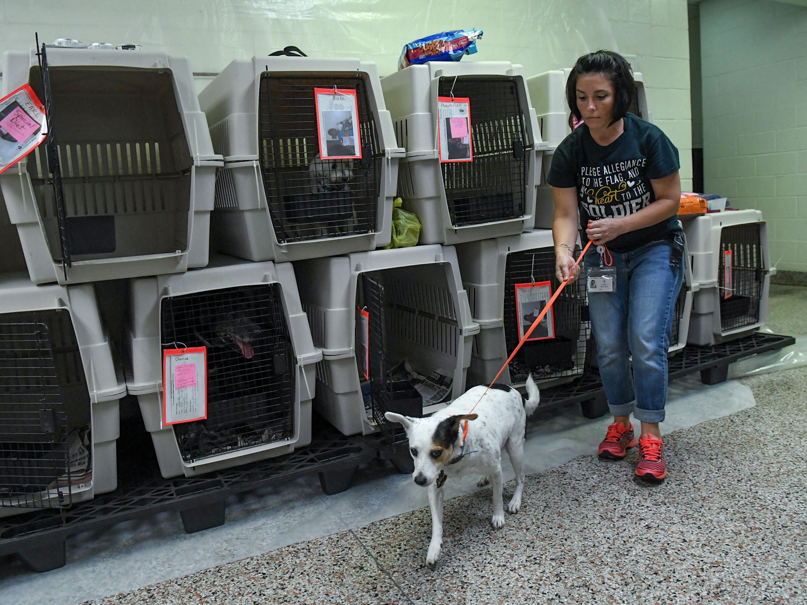 Jaime Waynick, an employee with New Hanover County, takes a dog for a walk at the county emergency shelter held at Trask Middle School in Wilmington, N.C.  Sept. 11, 2018.