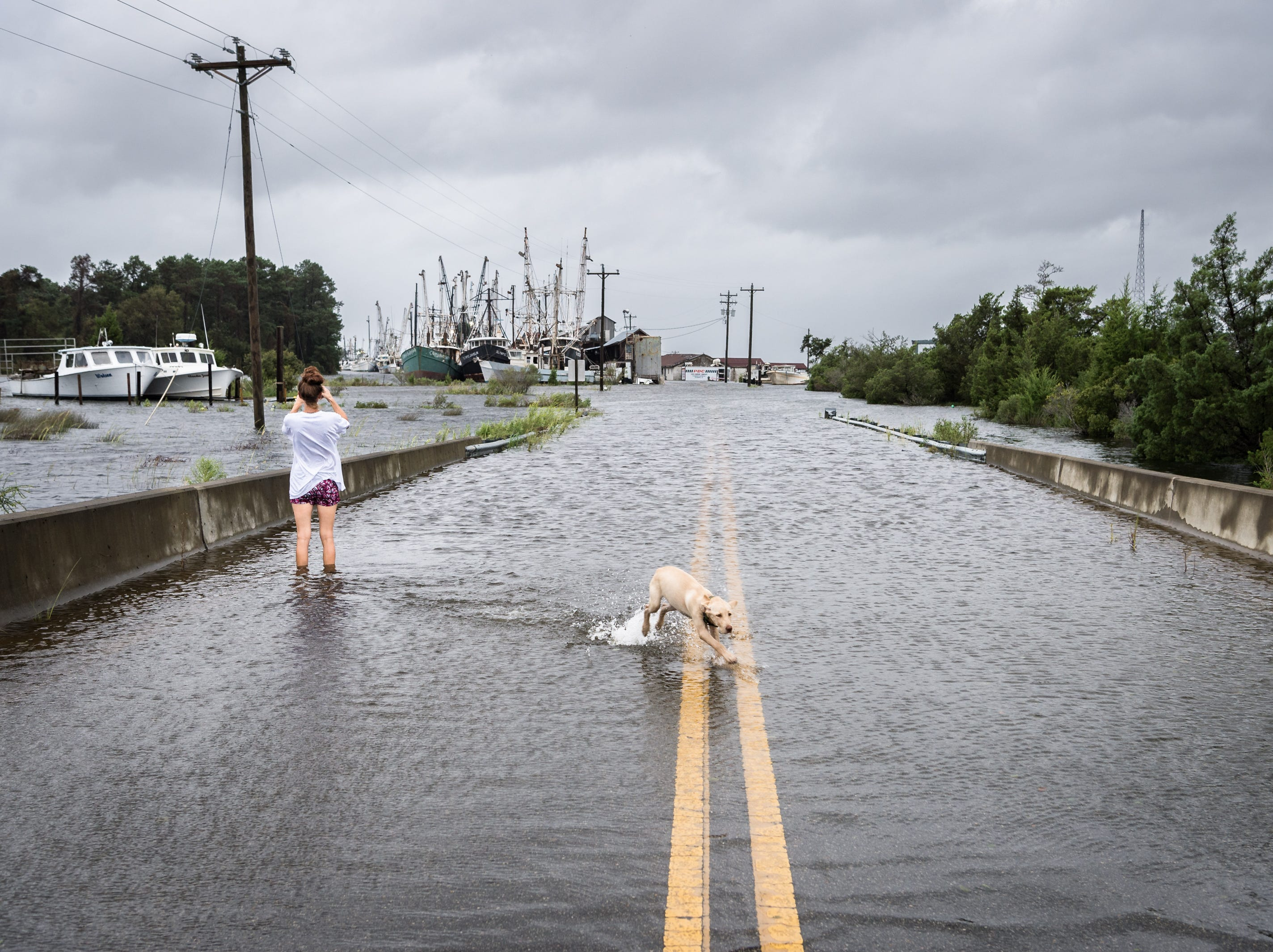 Jessica Bianco takes photos of the flooded Swan Quarter N.C harbor in Swan Quarter Bay with her dog Calypso after Hurricane Florence made landfall in Wilmington, N.C, Sept. 14, 2018.