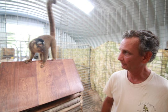 Glenn Fried gets set to allow a lemur to leap on his back.