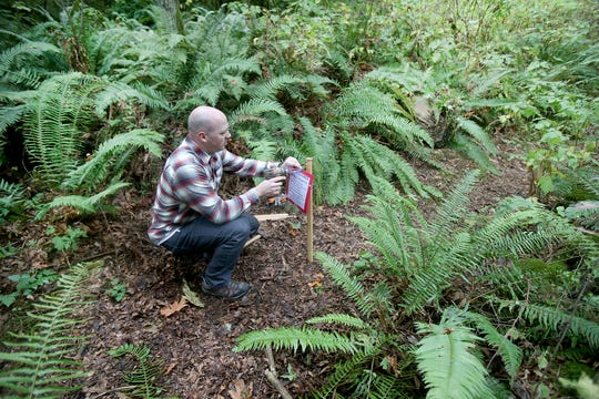Camp Indianola Director Darin Gemmer puts up a sign closing a camp trail. He and others are working to understand what could be killing off sword ferns on the property.