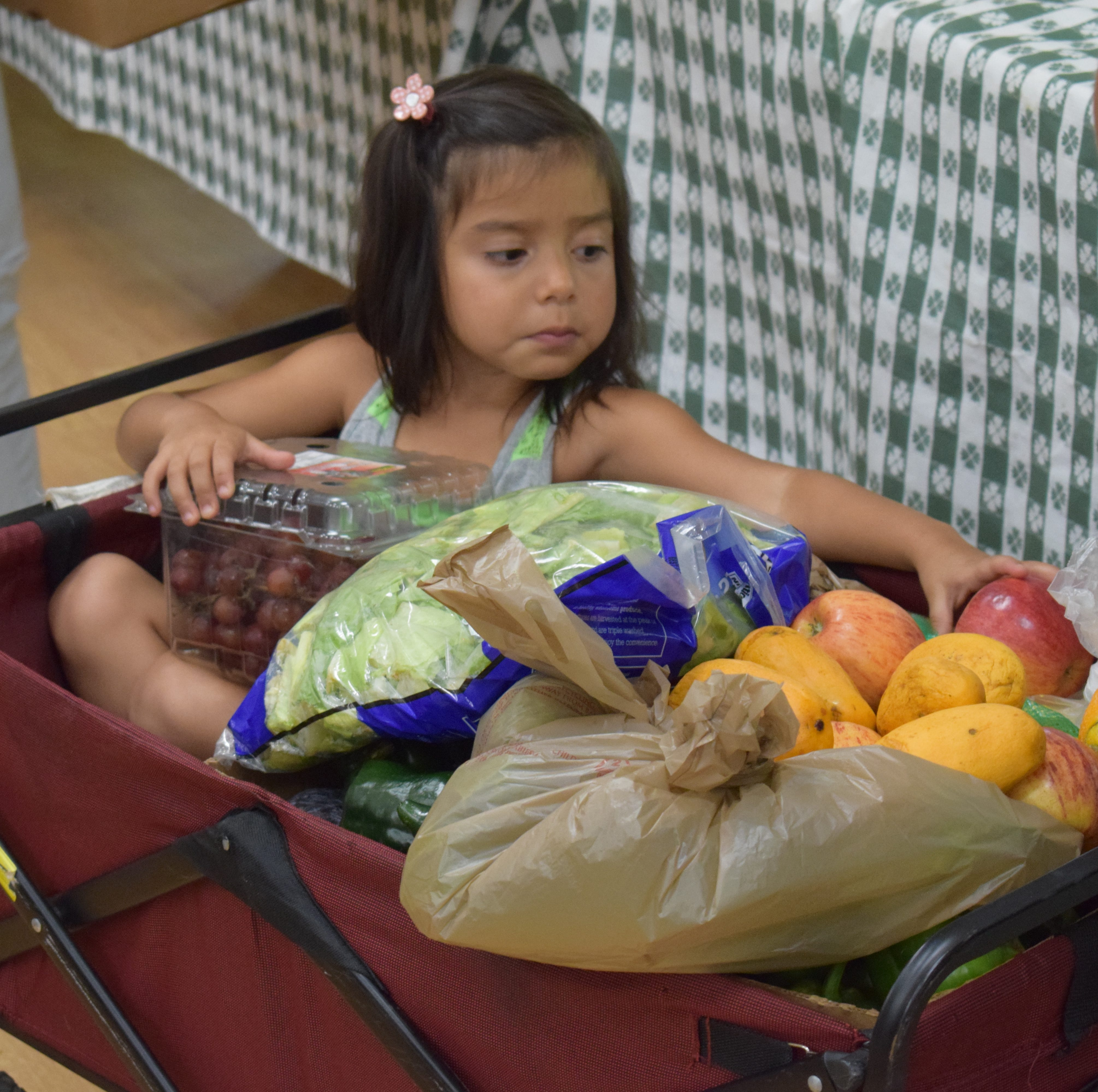 Examining the implications of hunger in the community