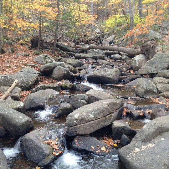 Nothing says fall like Hacklebarney State Park in Long Valley and Chester.