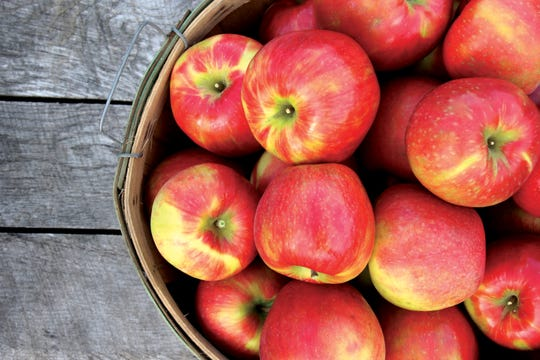 Honeycrisp apples are a consumer favorite