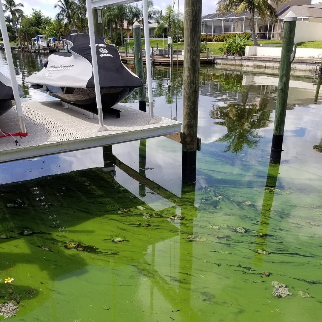 Tiny bubbles part of new strategy to strangle Lee County's blue-green algae problem