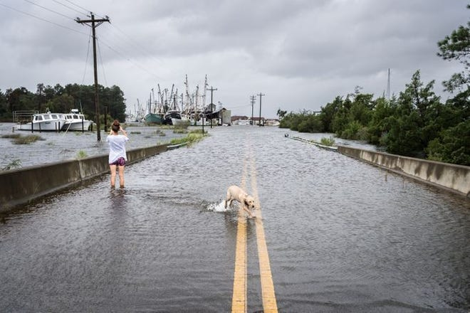 Jessica Bianco takes photos of the flood in Swan Quarter, North Carolina, after Hurricane Florence made landfall Sept. 14, 2018.