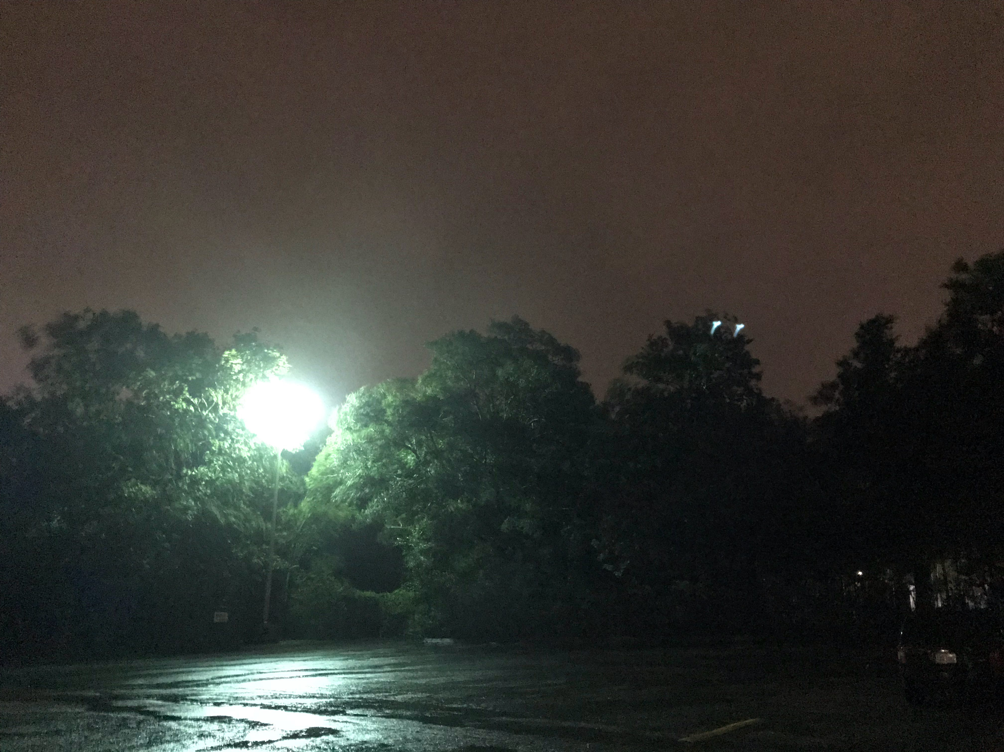 Wind gusts were blowing tree limbs near 17th Steet and Dawson Street in Wilmington around 4:45 a.m. Friday.