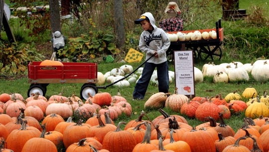Jim's Pumpkin Farm in Germantown is now open for the 2018 season.