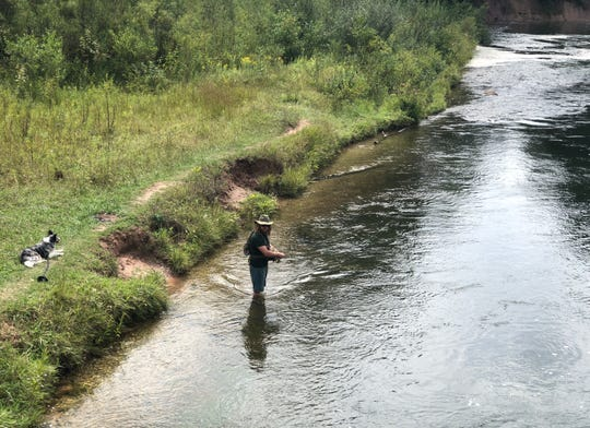 Supervised by his dog, a fly fisherman works the Big Manistee River in western Michigan.