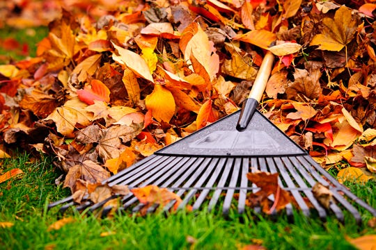 A fall lawn-care routine will help your yard look its best next spring.