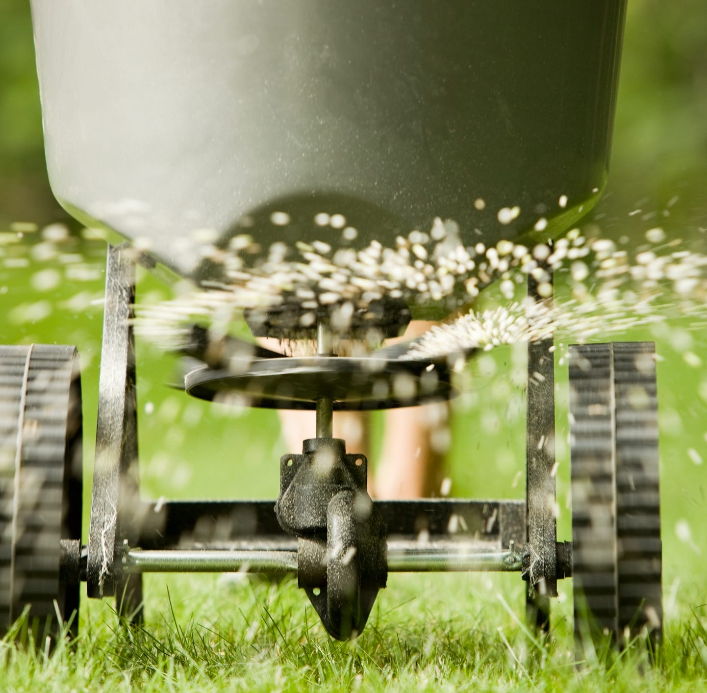 Gardening: It's time to fertilize