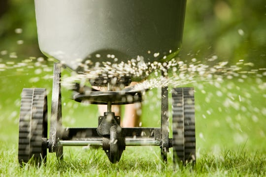 Test your soil before you fertilize your lawn this fall.