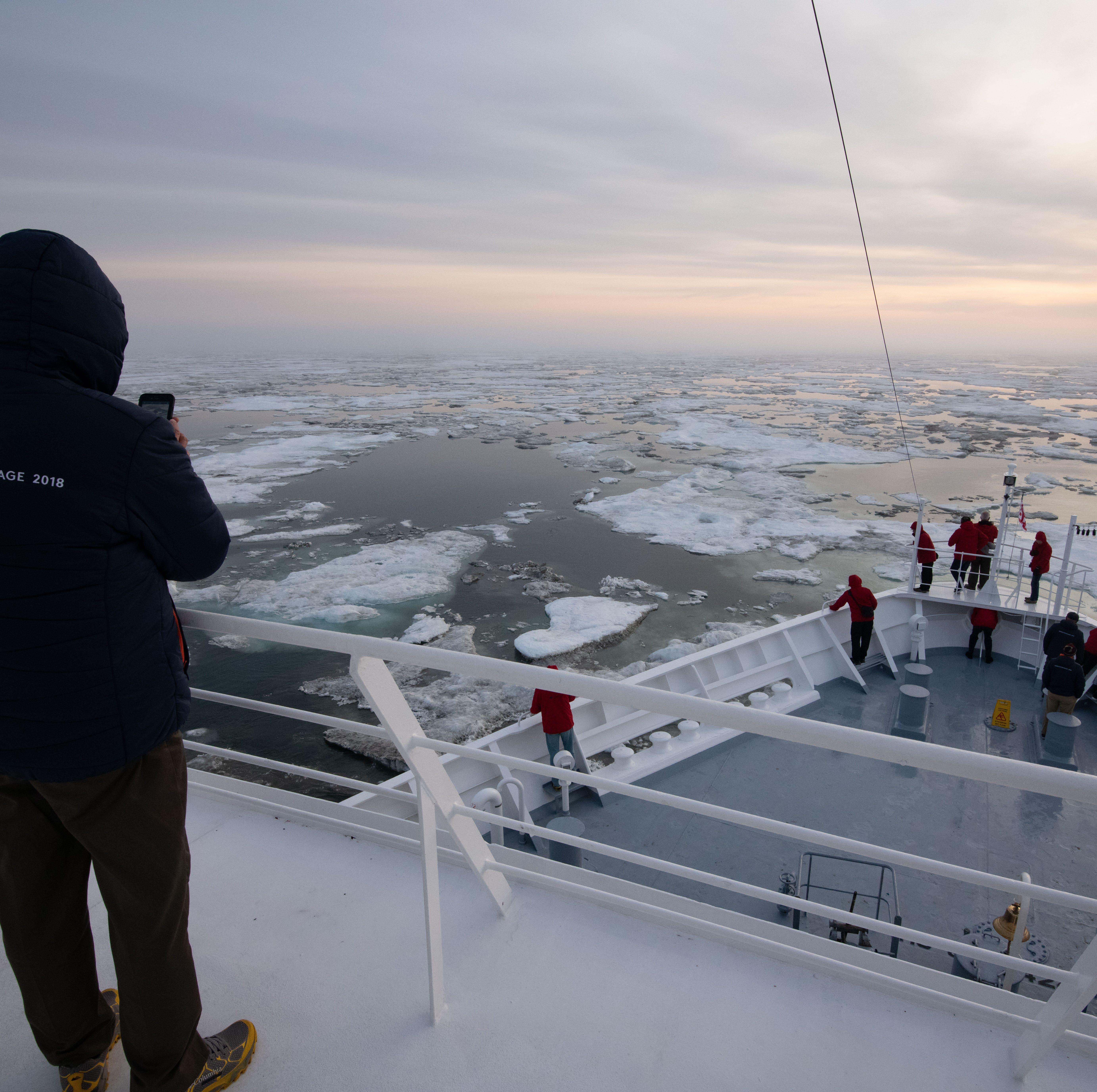 Polar bears, ice fields: New cruises across Russian Arctic bring rare adventure