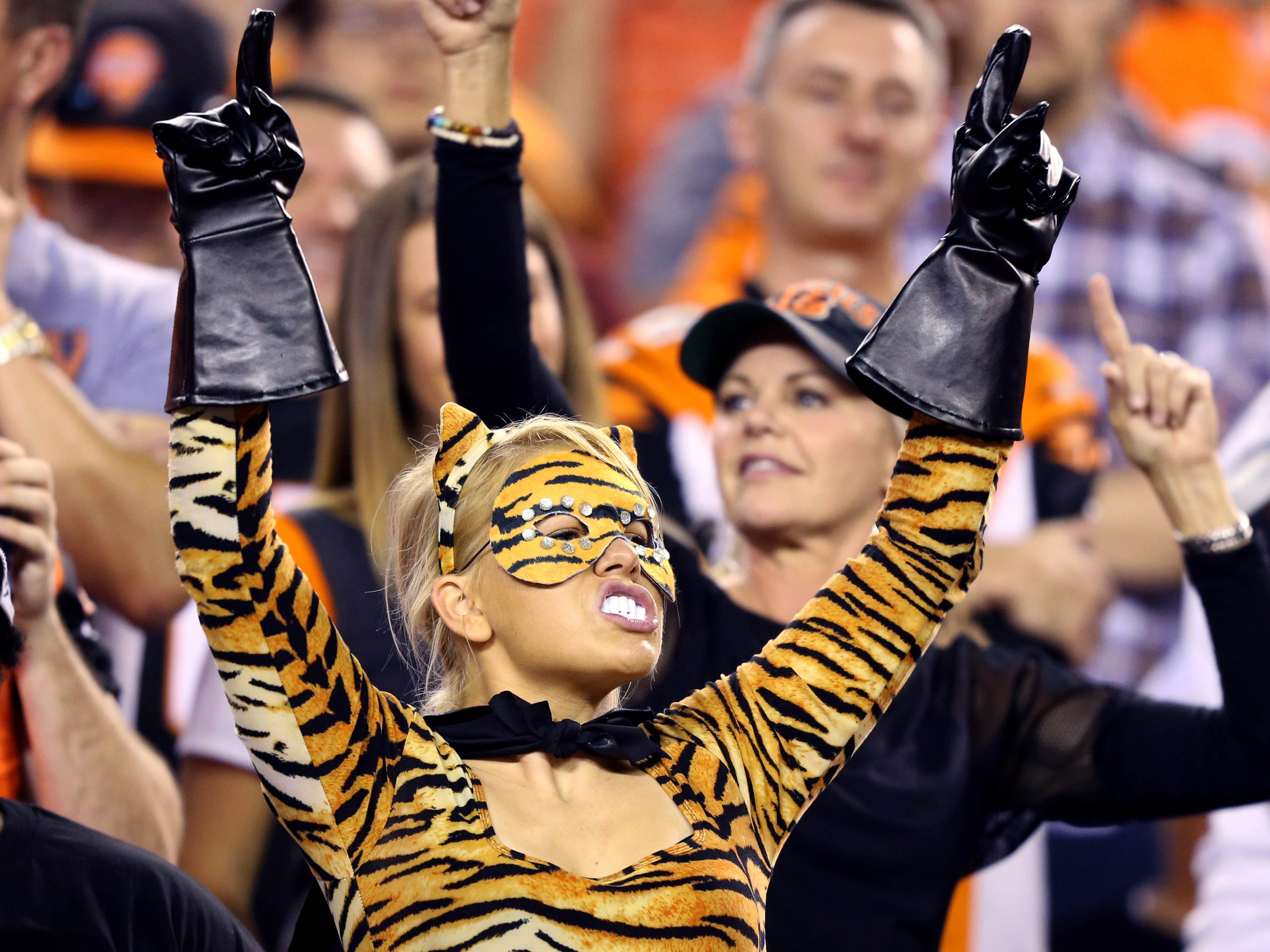 A fan shows support for the Cincinnati Bengals during the game against the Baltimore Ravens at Paul Brown Stadium.